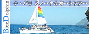 Splash of Kauai アクティビティ ナ・パリ スノーケルボートツアー