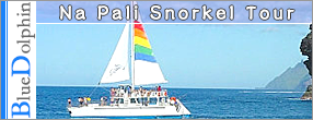 Splash of Kauai Activities - Blue Dolphin / Na Pali Snorkel Tour