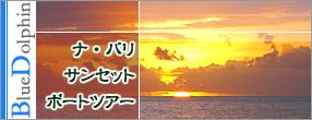 Splash of Kauai アクティビティ ナ・パリ サンセットボートツアー